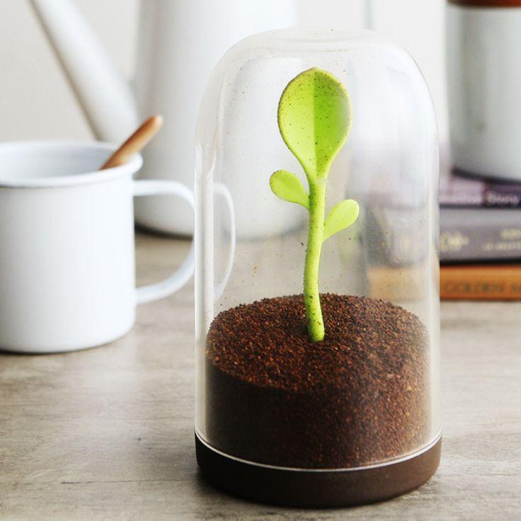 В банке с кофе выросла настоящая зеленая ложечка!) Цена ~ 530 руб.