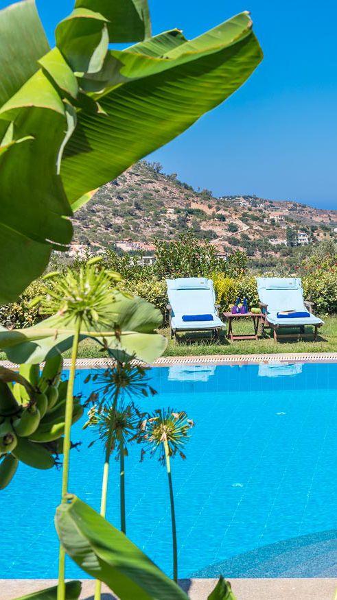 Behind banana trees - View from Villas Bali, Rethymno, Crete