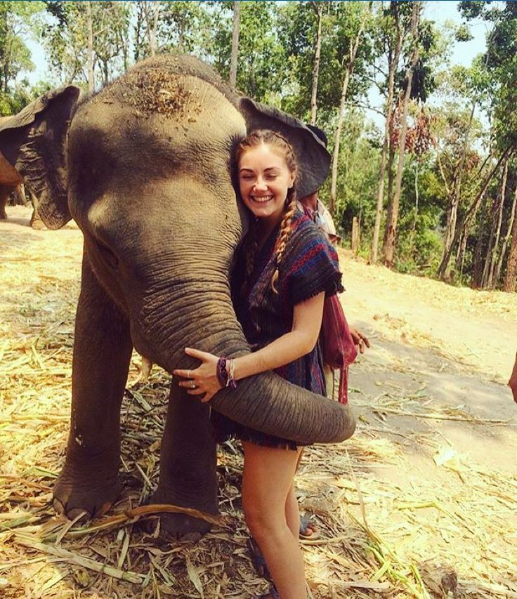 "-  Chiang Mai Thailand @motyelnats - ""New buddy at the Elephant Jungle Sanctuary outside Chiang Mai.  #backpackerstory by backpackerstory"