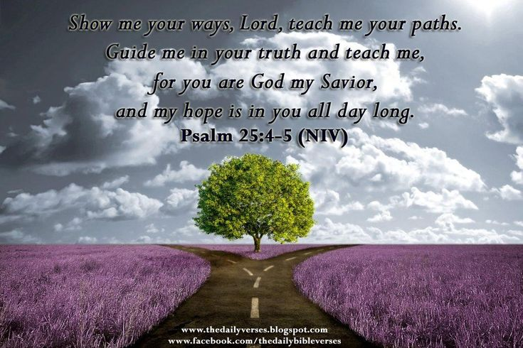 psalm 25:4-5 | Show me your ways, Lord, teach me your paths.