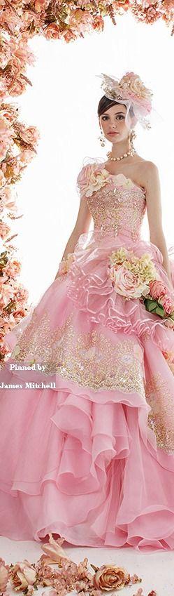 Pink stella de libero- so feminine!