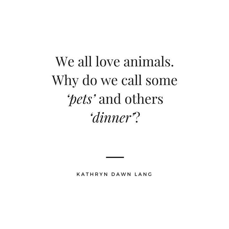 We all love animals... #veganquotes #vegan
