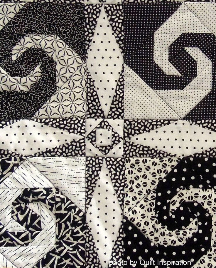 Snail's Trail in black and white by Jeannie Coleman, close up photo by Quilt Inspiration