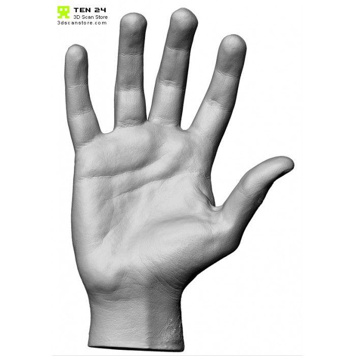 HandScan01_Relaxed5-700x700.jpg (JPEG 画像, 700x700 px)