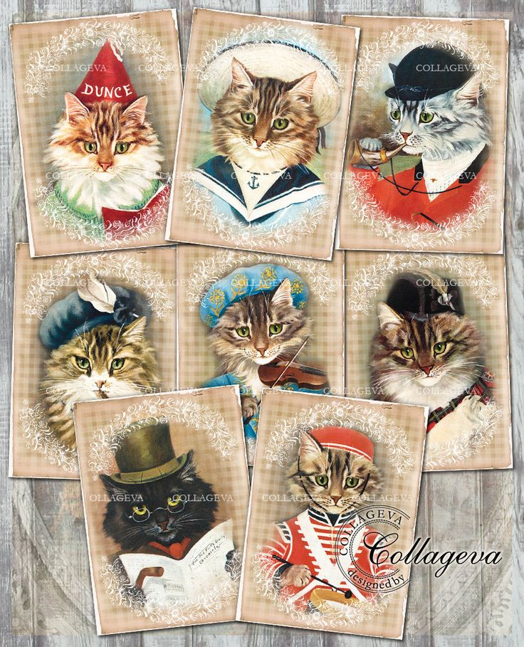 Cat Gentlemen Digital Tags, Kitten Tomcat Male, Vintage Grunge Plaid Background Shabby Chic Cards ACEO ATC, Sailor Musician Hunter (T009-a) by collageva on Etsy