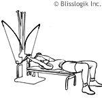 14 Best Images About Bowflex Workout Videos On Pinterest