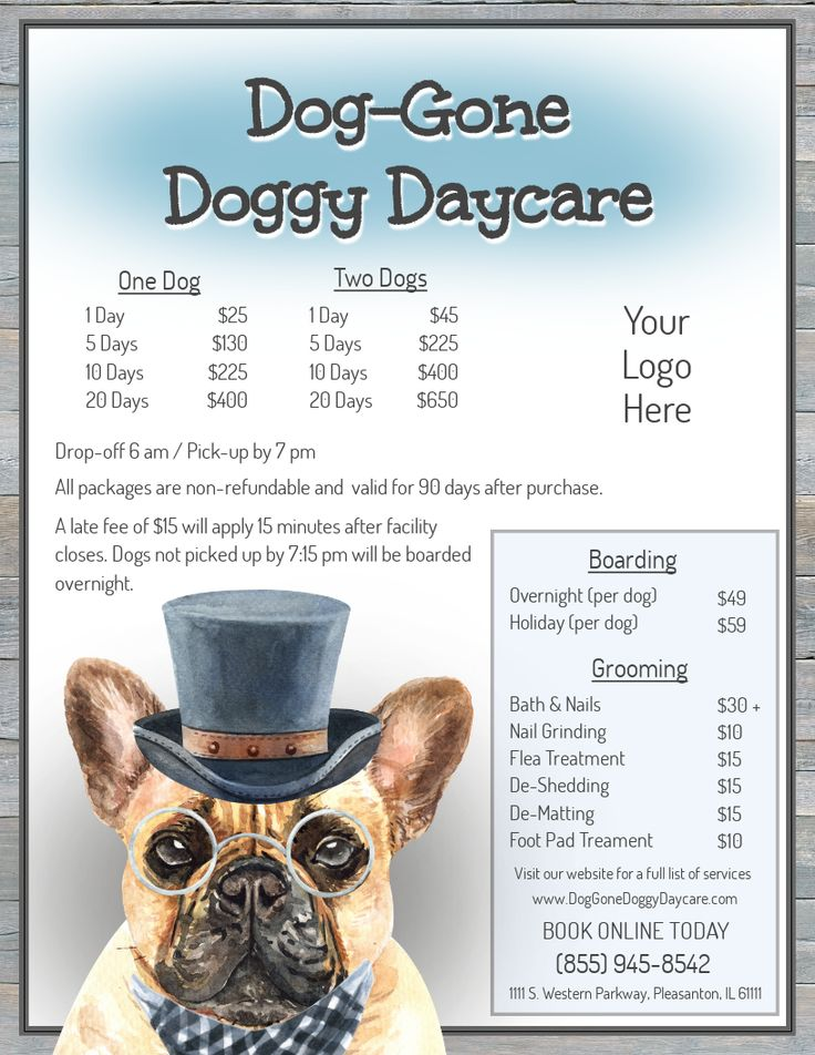 Doggy daycare menu doggy daycare services dog groomers