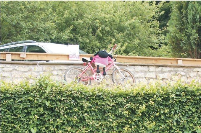 The bike and the trees might be a bit of a clue as to the whereabouts of this #pinksheep It's Dalby Forest Lodges!