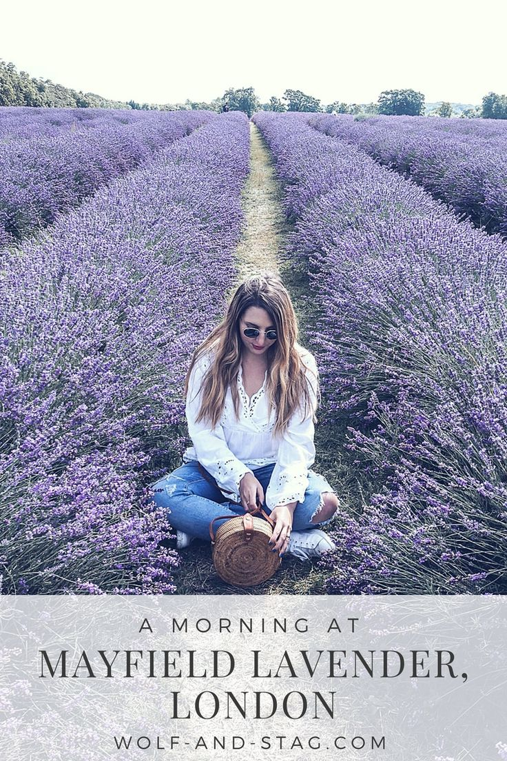 A Morning at Mayfield Lavender, London | Wearing a white H&M blouse, ripped boyfriend jeans, Wood/Grey round basket bag, Adidas Stan Smith white trainers, and Ray-Ban sunglasses | Wolf & Stag