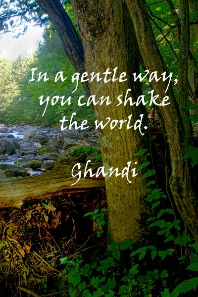 """""""In a gentle way, you can shake the world.""""  -- Gandhi – Image is New Jersey's Ken Lockwood Gorge Wildlife Management Area, a fly fisherman's dream.  Enjoy more nature and philosophy quotes at http://www.examiner.com/article/twelve-essential-nature-quotations"""