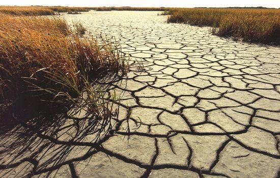 Планета Земля и Человек: Засуха на Кубе бьёт рекорд