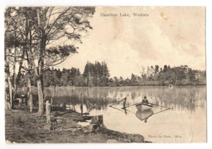Postcard of Hamilton Lake , Waikato. - 45691 - Postcard - Postcards Waikato - Postcards New Zealand - Postcards By Country - EASTAMPS