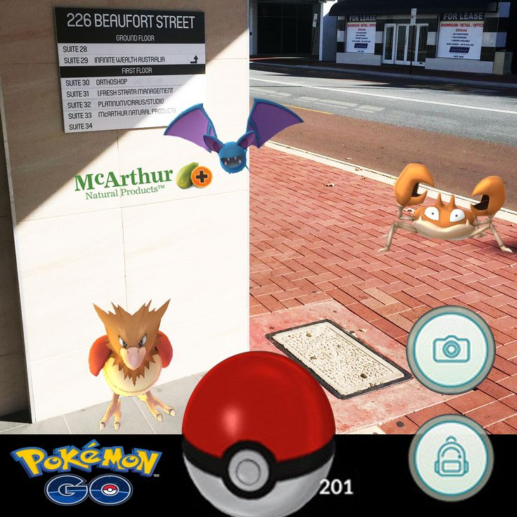 Hooked on the newly released Pokémon Go yet?   You may have heard of stories of people hunting down Pokémon all around Perth. For the avid Pokémon Go hunter we have a few inside and around our own Perth McArthur Natural Products office today, so we are keeping a close eye on our Pawpaw which appears to be attracting them.  What if Pokémon were real and inhabited our world?  Pokémon Go is a free-to-play, GPS based augmented reality mobile game for iOS and Android phones.