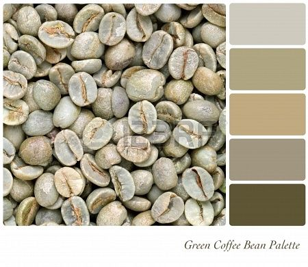 Unroasted coffee beans color palette - 123rf.com