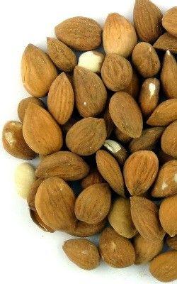 Abrikozenpitten - Kruiden kopen en bestellen