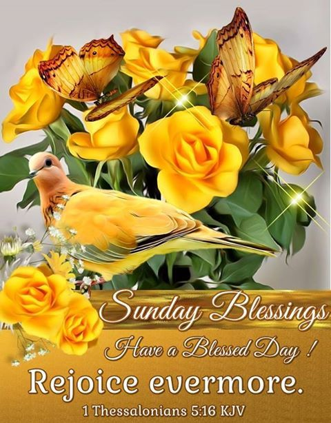 Sunday Blessings. 1 Thessalonians 5:16 KJV Have a Blessed Day!