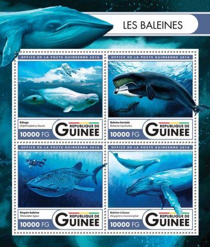 GU16424a Whales (Beluga (Delphinapterus leucas); Bowhead whale (Balaena mysticetus); Whale shark (Rhincodon typus); Humpback whale (Megaptera novaeangliae))