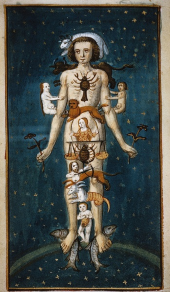 Zodiac Man (15th C) (astrological signs and their associated anatomy)