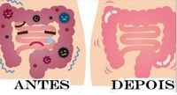 A limpeza intestinal, para a medicina alternativa, é sempre uma boa ideia, pois é uma maneira eficaz de expulsar as toxinas do corpo e melhorar a digestão.O remédio caseiro que ensinaremos hoje é extremamente fácil e rapidamente limpa o intestino.