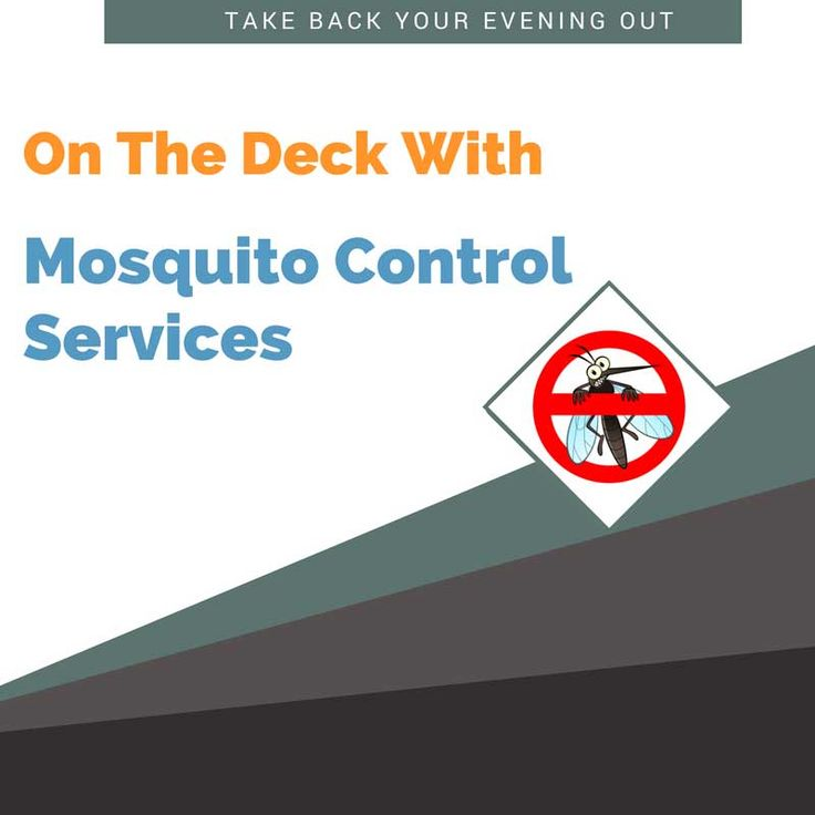 Take Back Your Evening Out On The Deck With Mosquito Control Services