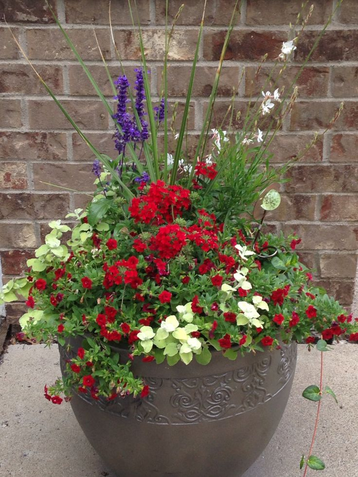 Red white and blue planter