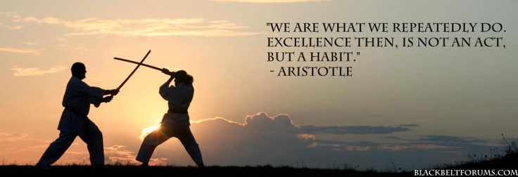 Aristotle Quote About Practice: 121 Best Images About Aikido, Tai Chi & Martial Arts On