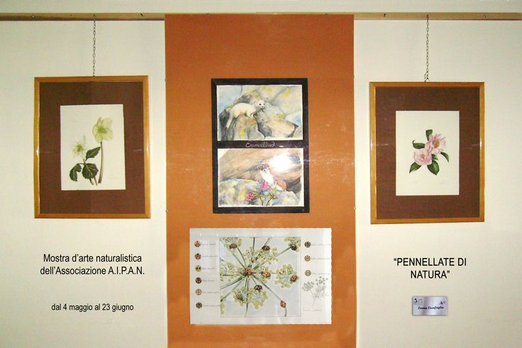 My spot at the Naturalistic art exhibition