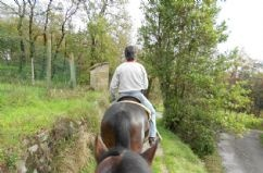 Barco Reale in the heart of Tuscany - some glamping, pools, hills, cooking, riding, events ...