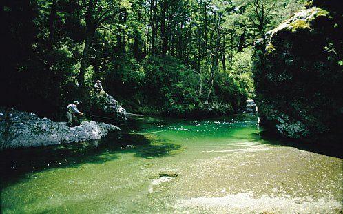 Central North Island | Ahipara Luxury Travel New Zealand