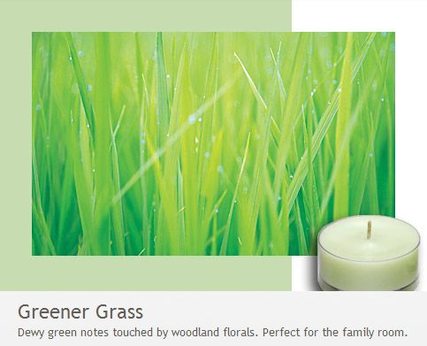Greener Grass: Perfect for the family room! Dewy green notes touched by woodland florals. From the fresh Home Collection.