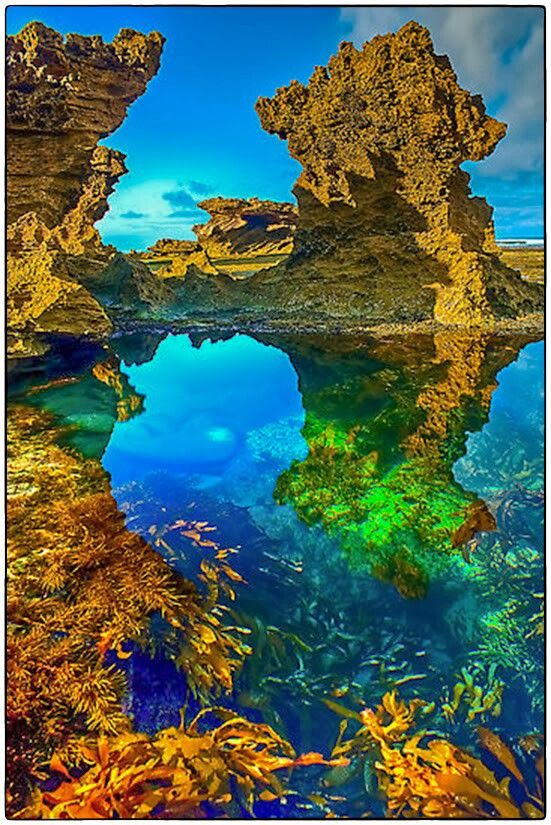 Back Beach, Sorrento, Australia