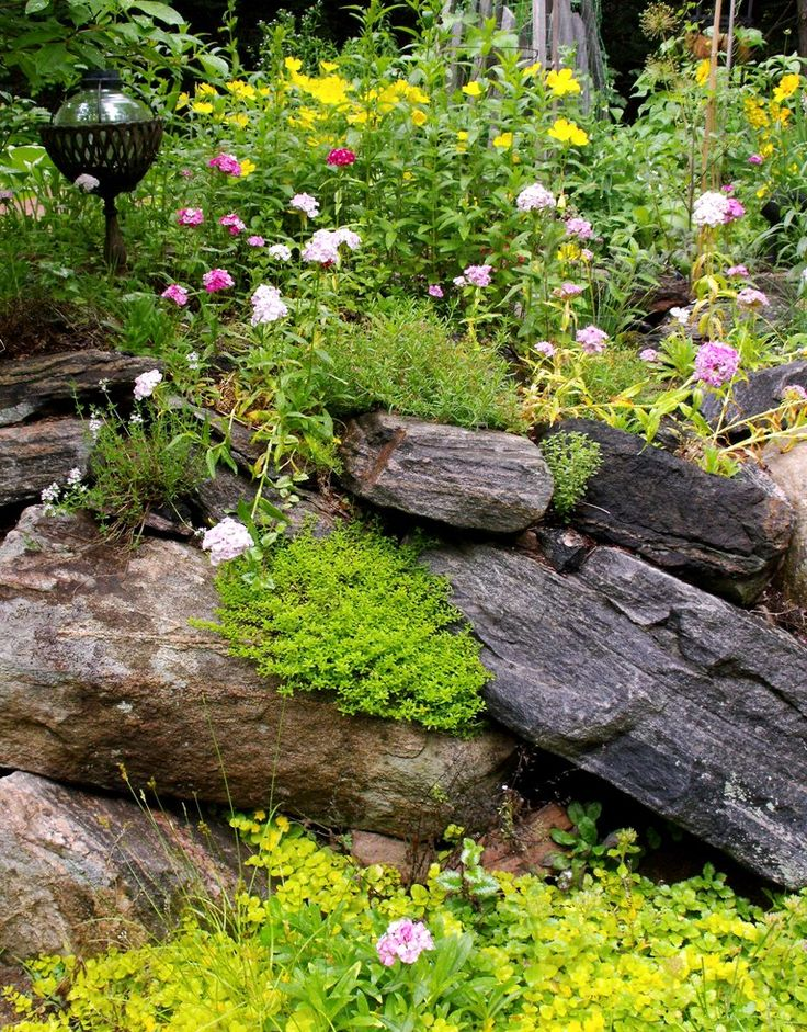 18 best images about rock and flower garden on pinterest for Flower wall garden
