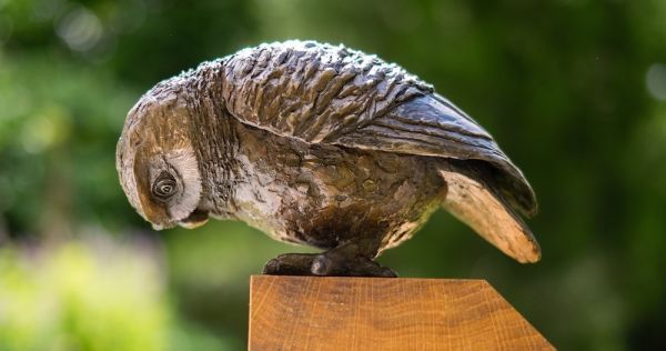 Curious and shrewd side #sculpture by #sculptor Marie Shepherd titled: 'Little Owl IV (I spy Looking Watching statuettes)'. #MarieShepherd