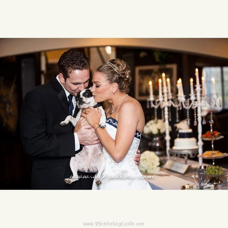 #dogflowergirl #TheSterlingCastle  #ElopeAtACastle #FairytaleWeddings #CastleWeddings