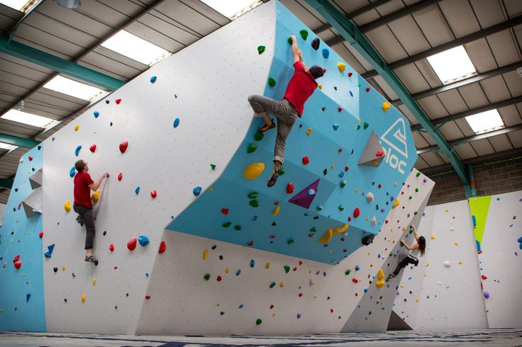 17 Best Images About Climbing Eaves On Pinterest