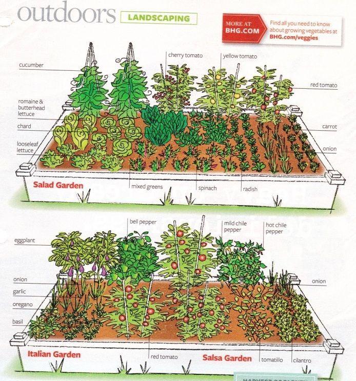 Potager Garden Blogs: Layout (BHG Magazine)