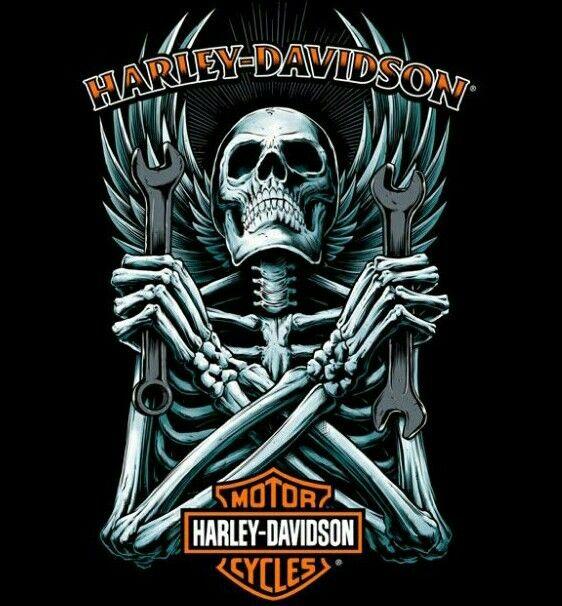Harley Davidson Wallpaper: 25 Best Harley Davidson Motorcycles Images On Pinterest