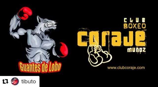Buen combate. No hay que perdérselo  #40andfit #boxeo #boxing #boxingday #boxinglife #rubennieto #go #hitashardasyoucan #charlie #madeinhell