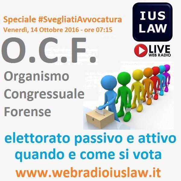 O.C.F. Organismo Congressuale Forense: Chi Vota Chi, Come e Quando. Ospite: avv. Sergio Paparo
