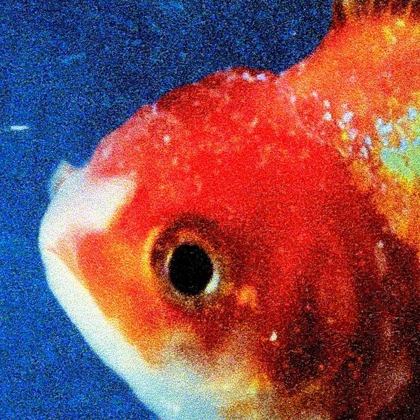 Vince Staples Drops 'Big Fish Theory' Album: #vincestaples