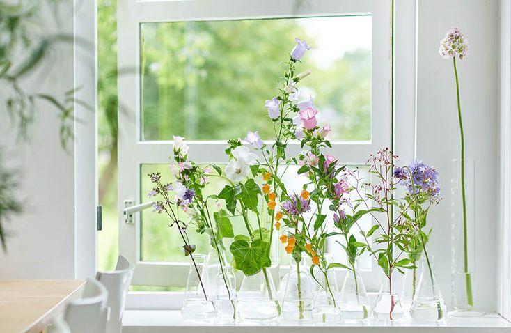 Serene schoonheid op een rij met zomerbloemen in kleine vaasjes met o.a. campanula en lavatera. Meer voorbeelden lees je in ons lijstje 10x creatief met zomerbloemen