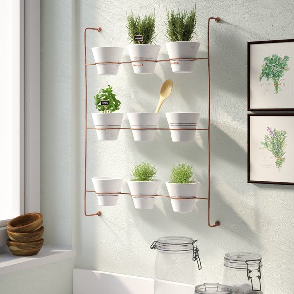 Wolter 9 Piece Wash Clay Wall Planter Metal Wall Planters