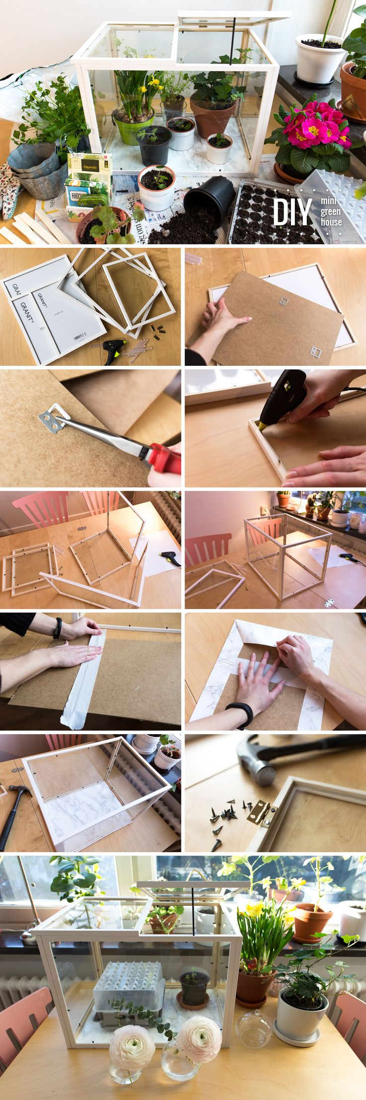 DIY – Mini green house out of picture frames by Anna María