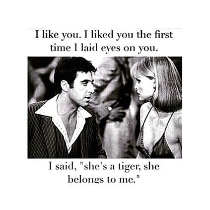 Top 100 scarface quotes photos THE SOUL OF A TIGER #scarface#the#best#movie#ever#alpacino#scarfacequotes#xoxo See more http://wumann.com/top-100-scarface-quotes-photos/