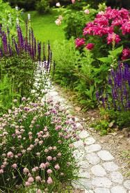 Native New England plants are a low-maintenance way to add beauty to the yard.