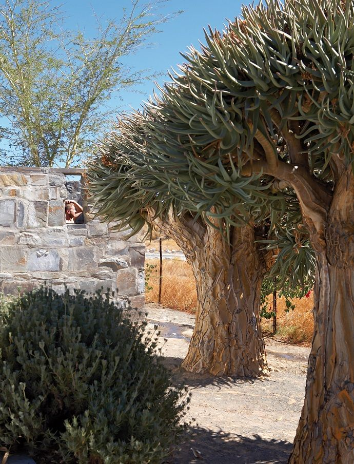 House-and-Leisure-rustic-karoo-farmstead-9