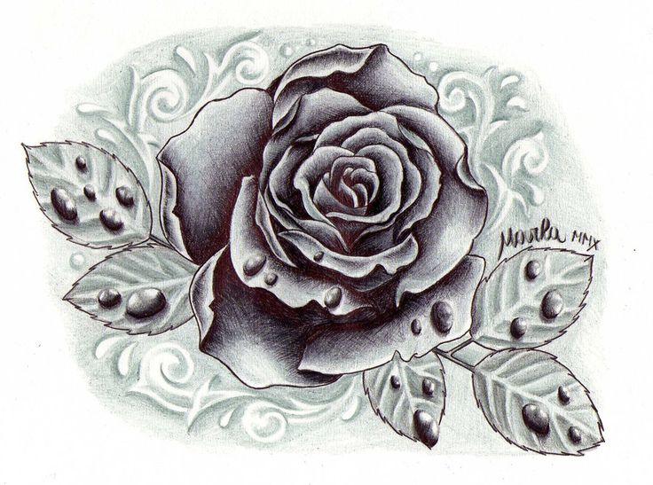 black and grey rose with drops by zeromarla on deviantart i like this one too minus the. Black Bedroom Furniture Sets. Home Design Ideas