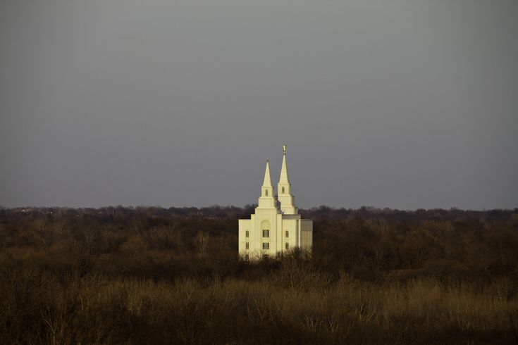 Mormon Church Admits Founder Joseph Smith Had 40 Wives...this article, like the three before it on mormon garments and Joseph Smith's underage brides, is hitting the mormon members hard.  What's the ultimate purpose behind the general authorities thinking on this?  What do they have planned?  Do they think people will accept a founder as heinous as Joseph Smith, after all of this revelation?