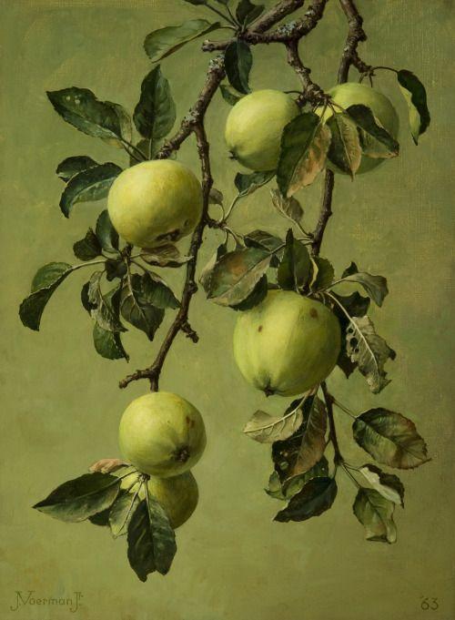 Apples, oil on canvas by Jan Voerman jr (1890-1976). 1963.