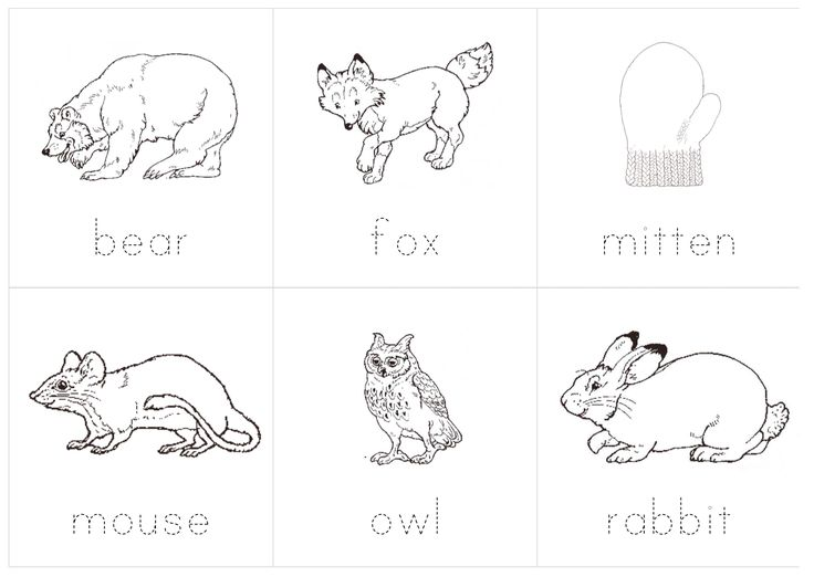 Best Mittens Theme Images On   Preschool Ideas